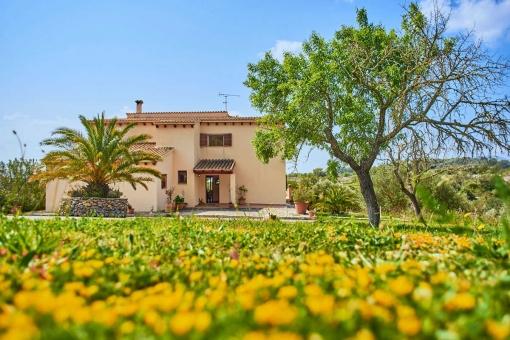 Finca Artista with a wonderful large garden.